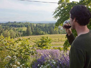 Wine tasting in Northern Willamette Valley