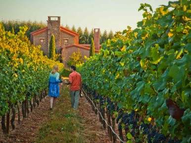 Praise for Oregon Wineries, Distilleries and More