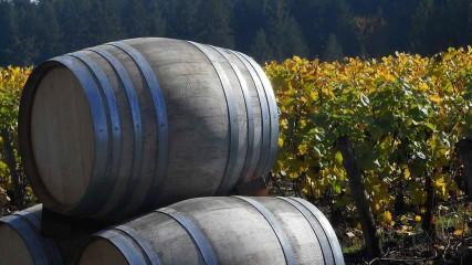 Ardiri barrels