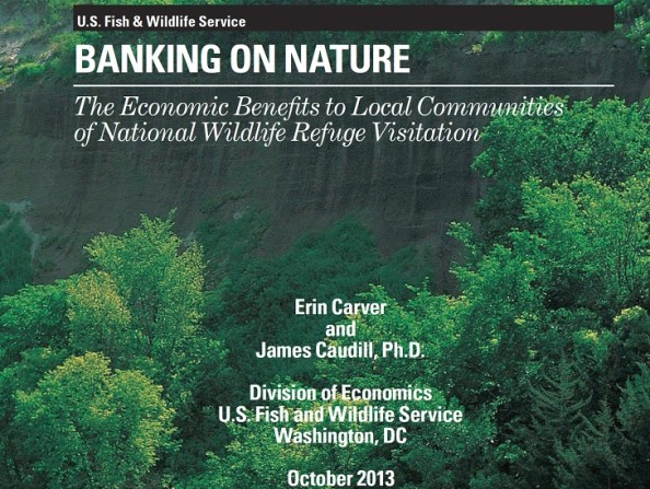 Cover_Banking on Nature