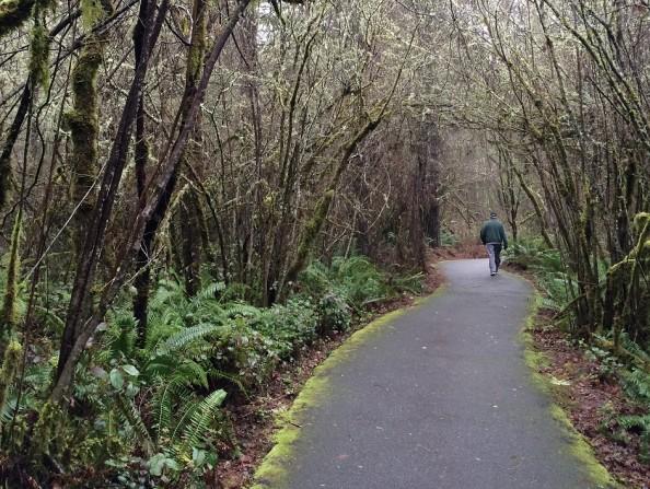 IMG_4003_Tualatin_Hills_Nature_Park_2015_Doug_Frierott