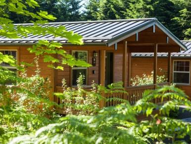 Rustic Cabin Stub Stewart