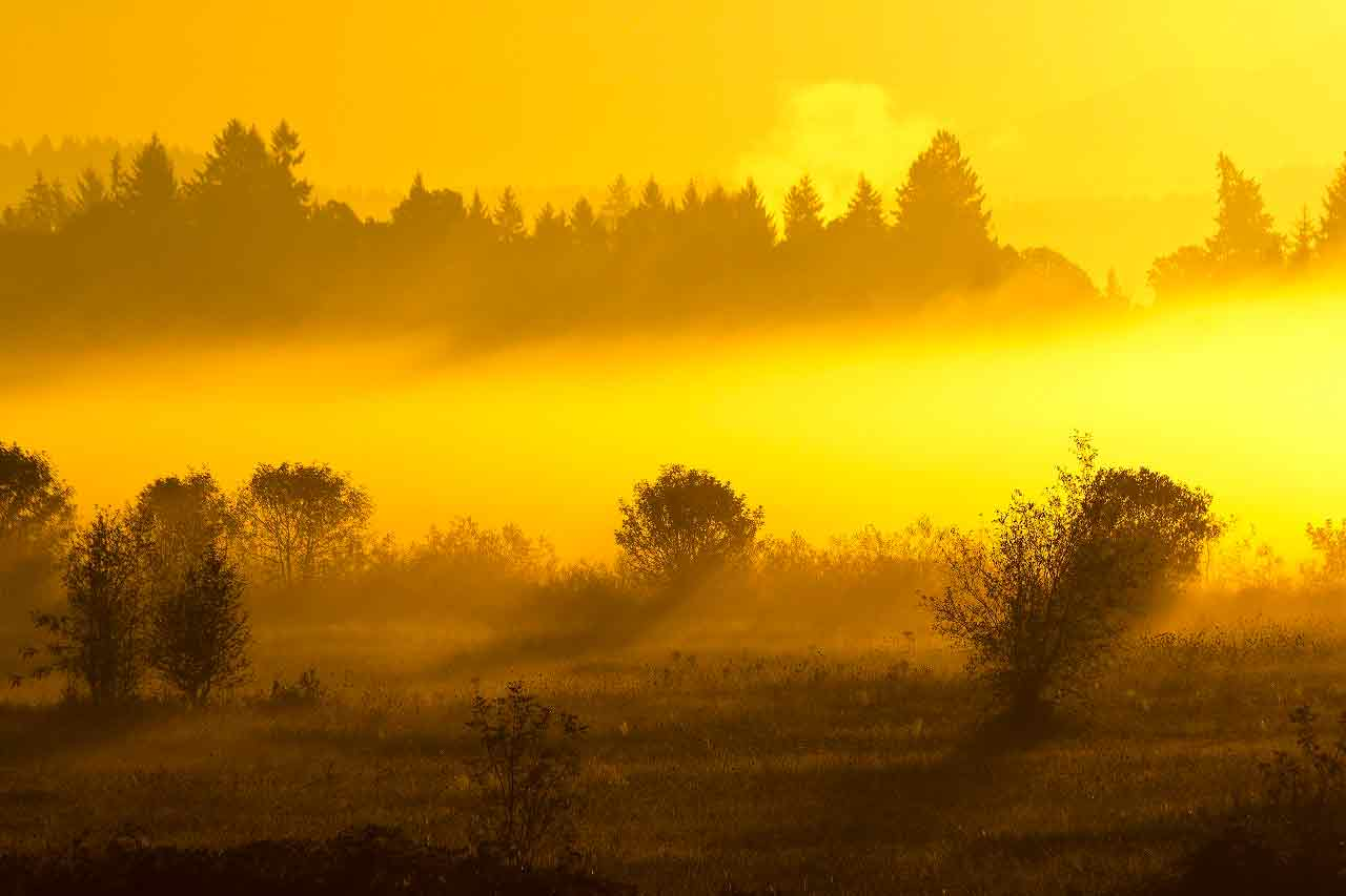 things to do in the tualatin valley wildlife refuge