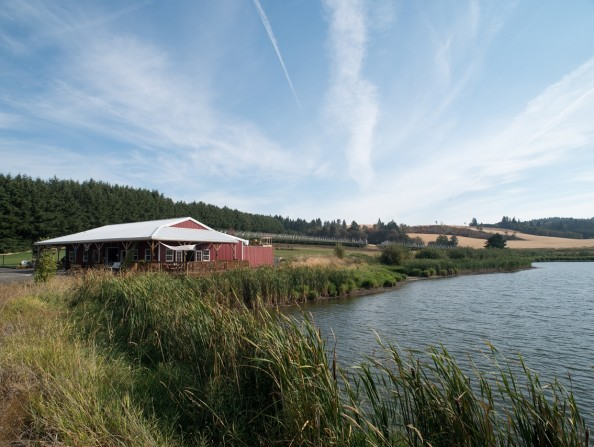 Unger_Farms_Lake_Douglas-Ferriott (38)