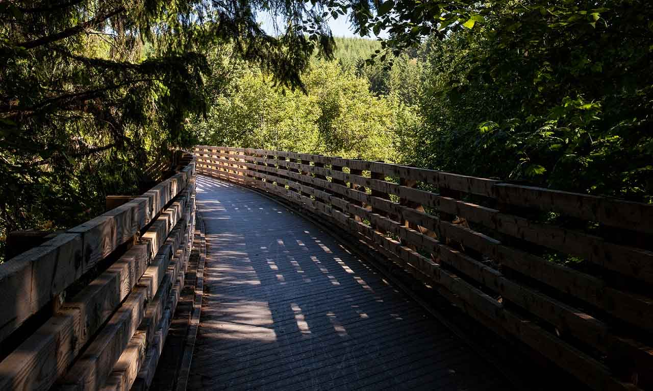 oregon bike trails Banks-Vernonia State Trail