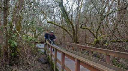 Fanno_Creek_Trail