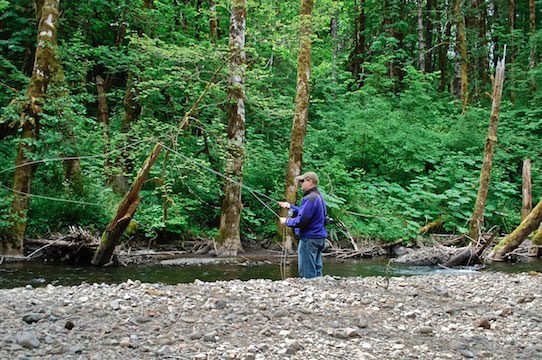 Flyfishing-Gales-Creek_542x360