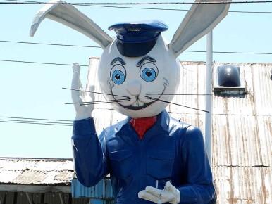 Harvey the Rabbit