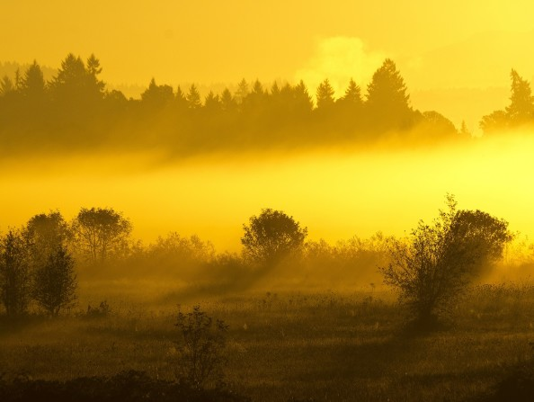 Tualatin_River_National_Wildlife_Refuge_Sunset_CREDIT_Alec_Frank