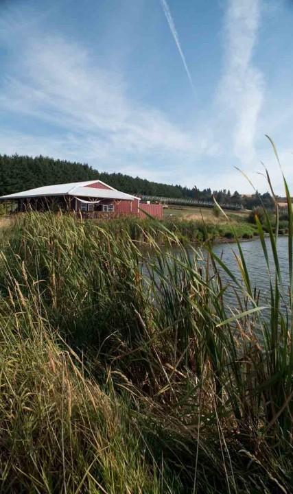 Unger Farms in Cornelius