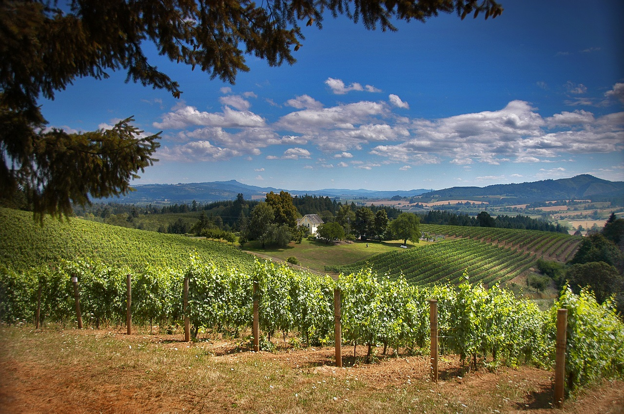 Forest Grove Wine Trail Tualatin Valley