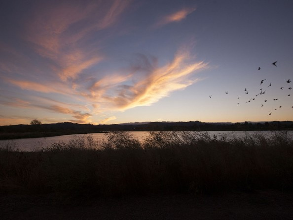 Sunset_JimShea