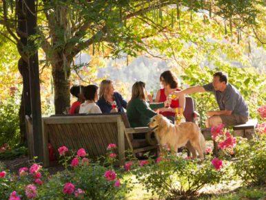 Garden Vineyards Oregon Wine