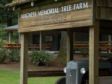 magness memorial tree farm